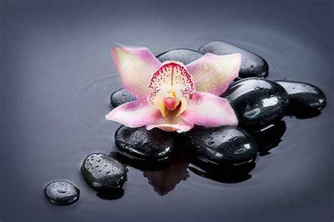 chambre style york tableau fleur orchidée izoa