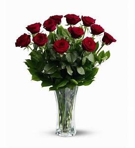 A Dozen Premium Red Roses - TF31-1 ($74.66)