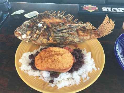 whole fried liom fish picture of grills seafood deck