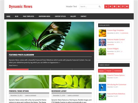 Word Press News Themes Dynamic News Theme Themes For Blogs At