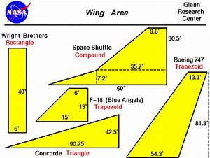 Wing Area