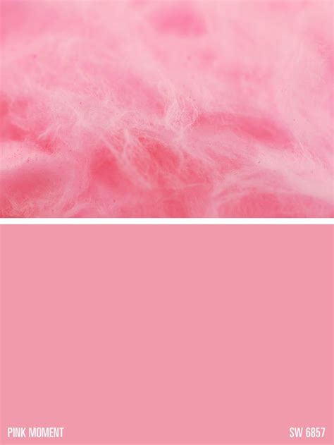 sherwin williams paint color pink moment sw 6857