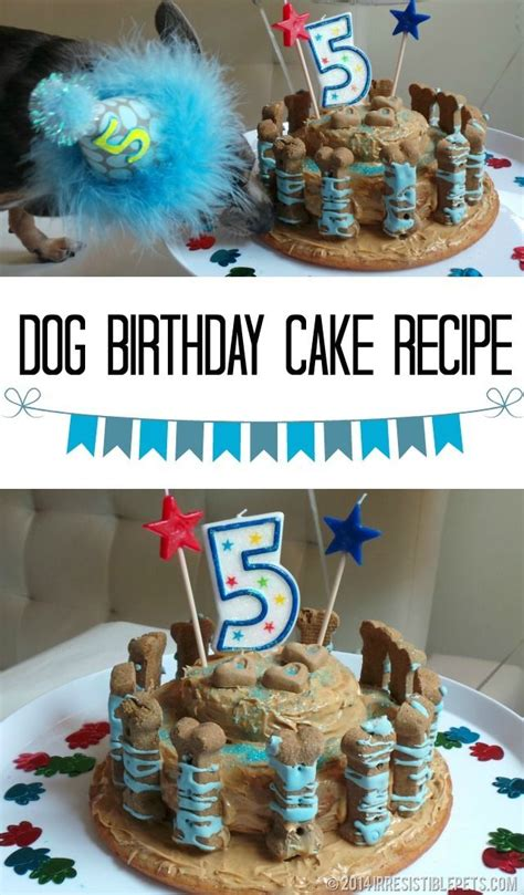 dog birthday cake recipe  irresistiblepetscom dorys