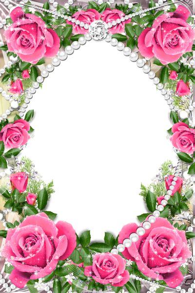 transparent delicate frame  pink roses gallery