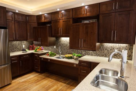 Universal Design Dream Home  Transitional  Kitchen  Dc