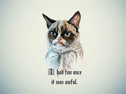 Cat Grumpy Funny Wallpapers Backgrounds Fun Awful