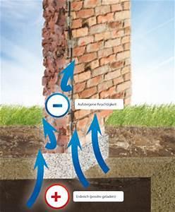 Feuchtigkeit Im Mauerwerk : wirkung blatt trocknungstechnik mauertrockenlegung mit ~ Michelbontemps.com Haus und Dekorationen
