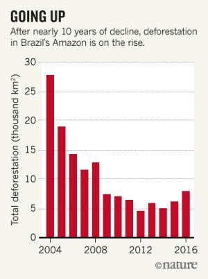 deforestation   amazon      time big