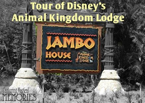 Jambo and Welcome Home – Capturing Magical Memories