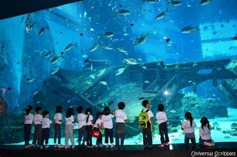 aquarium my trivial pursuits