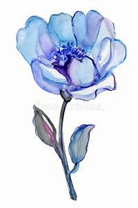 Blue Flower Isolated On A White Background. Stock ...
