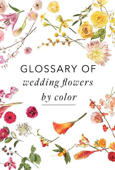 glossary  wedding flowers  color bridescom