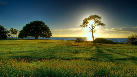 Nature Background Hd ·① Download Free Cool Full Hd