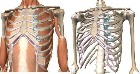 Rib Pain Treatments Costochondritis Innova Pain Clinic