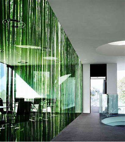 Glass Panel Printed Sticla Decorative Vidrio Printing
