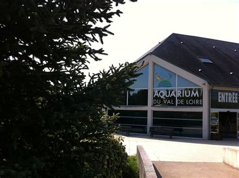 grand aquarium de touraine lussault sur loire on tripadvisor address phone number