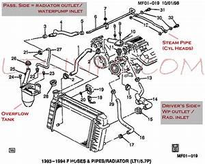 Lt1 Engine Diagram Water Pump  U2022 Downloaddescargar Com