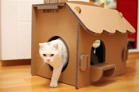 great ideas  indoor cat house