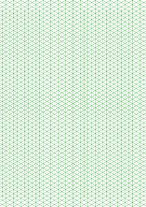 Biodata Form Sample Isometric 1 4 Inch Figures Graph Paper Triangles Only