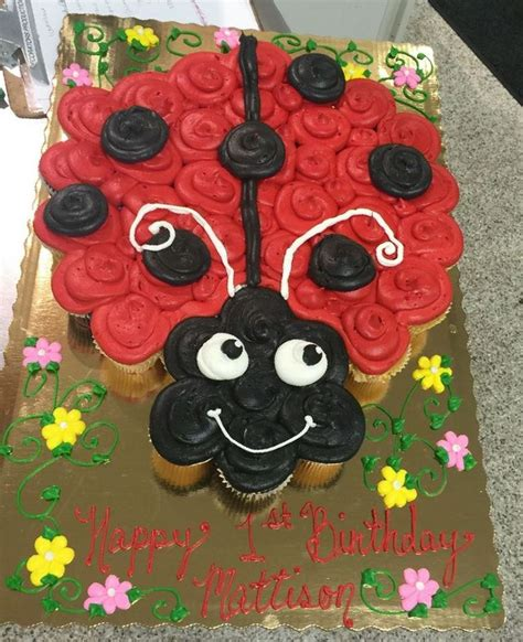 ladybug pull  ladybug st birthdays ladybug