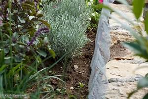 Schneckenzaun Selber Bauen : schneckenzaun und kr uter gedeihen doch rezept mit ~ Lizthompson.info Haus und Dekorationen