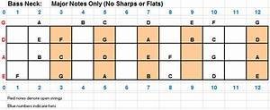 Playing Bass  Bass Lesson 1  Learning The Bass Neck  Notes
