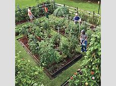 Nice article on how to grow a vegetable garden and
