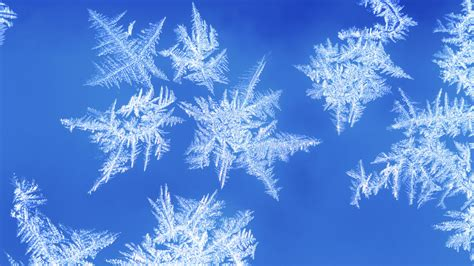 New Free Snowflakes And Theme Available For Windows 7
