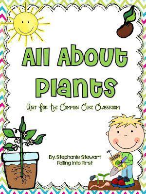 plants unit    st   graders
