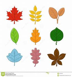 Various Autumn Leaf Hand Drawing Stock Vector ...
