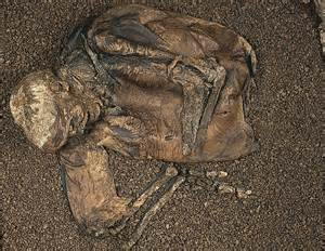 Iron Age skeleton of a human, dogs and a sex object found ...