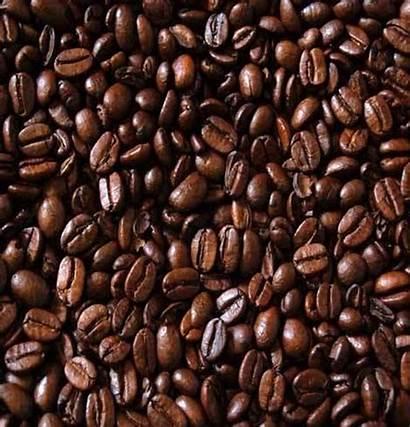 Beans Coffee Roasted Bean Pharmaceutical Seeds Island