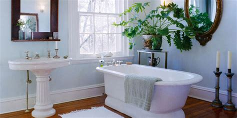 feng shui bathroom plants for health wealth luck