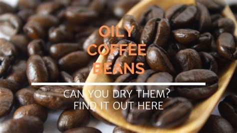 Darker roasts have a more fragile shell due to their prolonged exposure to. How To Dry Oily Coffee Beans (Can You Do It?) | SoloEspresso.net