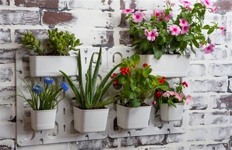 Garden Modules by Mini Vertical Garden Kits Make Easy Cactus Succulent Gifts
