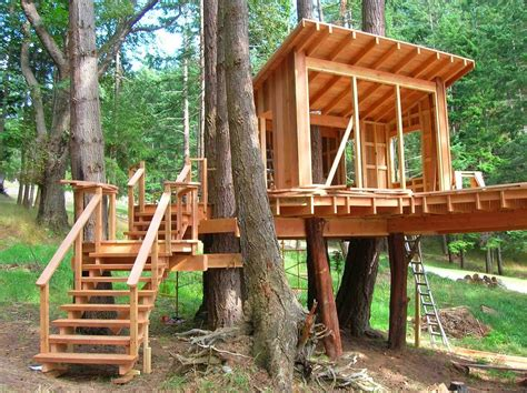 Treehouses For Kids For A Surprise Gift Homestylediarycom