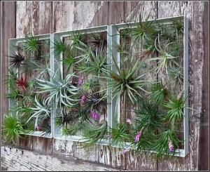 Beautify Your Patio trough Garden Wall Art Ideas