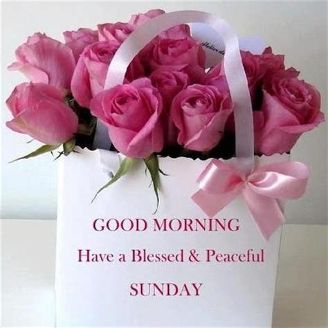 Blessed Sunday Morning Images Morning A Blessed Sunday Pictures Photos And