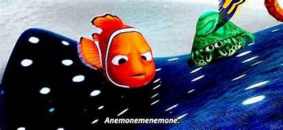 Nemo Finding Pixar Disney Fandom Gifs Funny