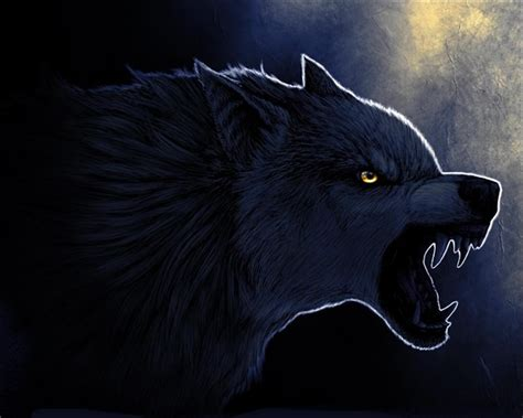 Angry Wolf Wallpaper Black by Angry Wolf Wallpaper On Wallpaperget