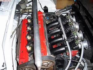 Citroen Zx Kitcar