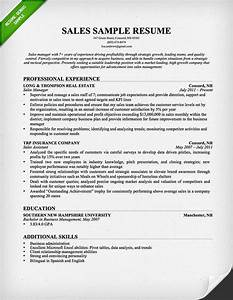 insurance sales resume sample resume genius With how to write a resume for sales position
