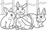 Bunny Coloring Pages Printables sketch template