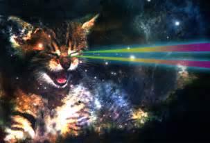 cat laser space cat on