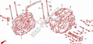Crankcase For Honda Nx 125 1997   Honda Motorcycles  U0026 Atvs