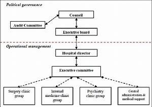 Organisational structure of the hospital district (see ...