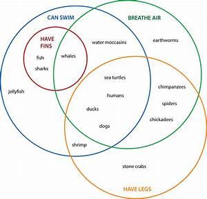 Venn Diagrams  Animals  4