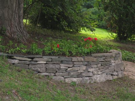 a retaining wall for a tree