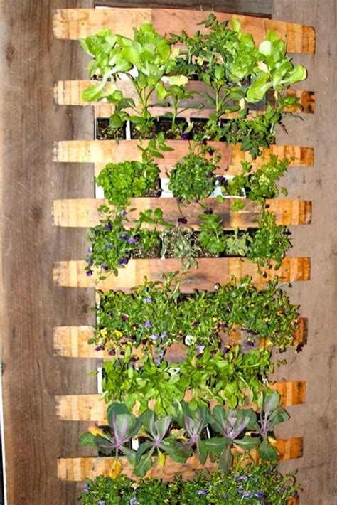 Used In Vertical Gardens by 21 Simply Beautitful Diy Vertical Garden Projects That