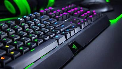 Razer Blackwidow Keyboard Gaming Keycaps Switch Tactile